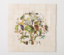 On Green, 2008, hand cut paper, 61.5 x 62.5 cm