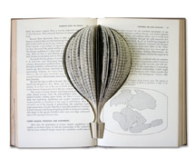 Wandering Lands and Animals, 2006, hand cut book, 24 x 30 x 10 cm