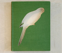 Complete Australian Gardener/Red Rumped Parrot, 2009, hand carved found book, created as part of a 12 piece book series for Emirates, Wolgan Valley Spa & Resort