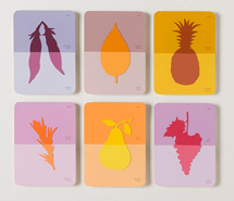 Food Poisoning, 2008, hand cut paint swatch cards, 39 x 42 x 4 cm, exhibited in Food For Thought, NG Art Gallery (2008)